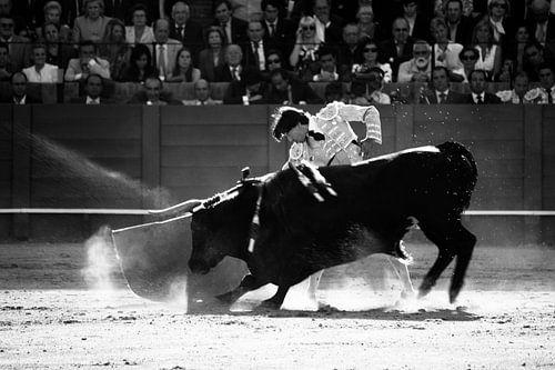Stierengevecht von Cees van Valen