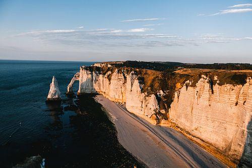 De olifant van de kustlijn van Frankrijk