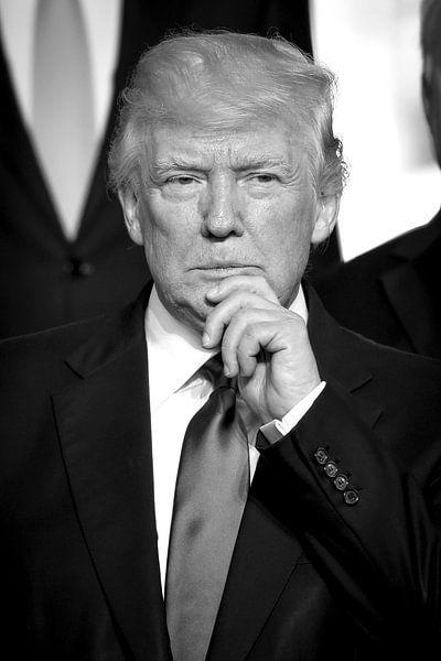 US President Donald Trump von Patrick van Emst