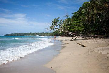 Caraïbische kust bij Manzanillo (Costa Rica) van t.ART