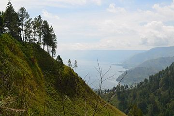 Uitzicht op een tropisch dal in Indonesië van Esther Kruik