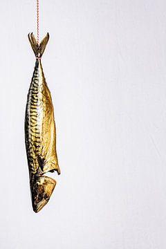 gestoomde makreel hangend aan touw van MICHEL WETTSTEIN