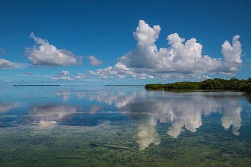 Spiegelend water landschap in Florida van