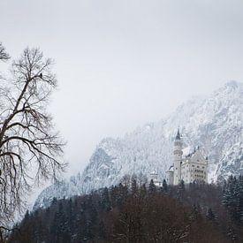 Slot Neuschwanstein van Leanne lovink