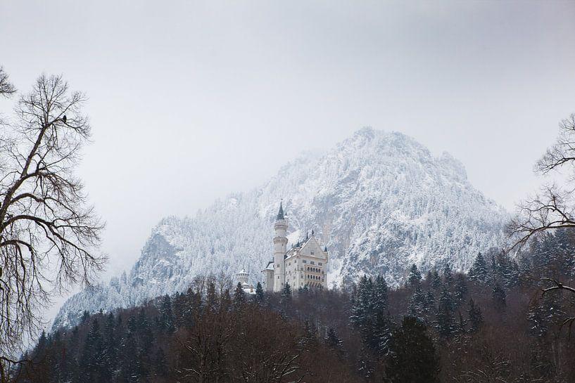 Neuschwanstein Castle sur Leanne lovink