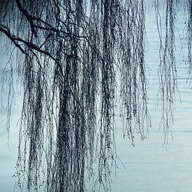 ZEN am See von Lena Weisbek