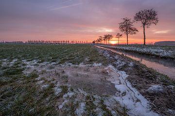 Winters landschap in de Betuwe van Moetwil en van Dijk - Fotografie