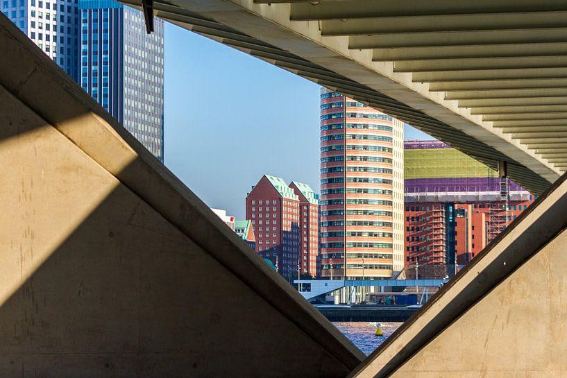 Kop van Zuid Rotterdam van Studio Wanderlove