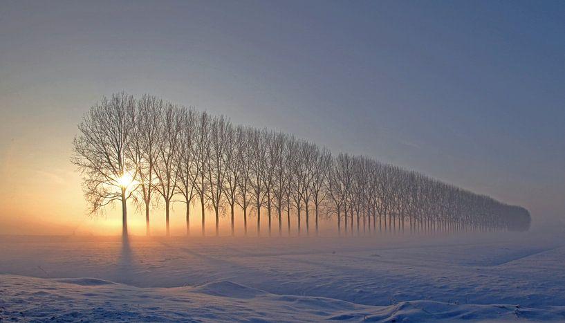 Dreamscape in Holland  I van Marinus de Keijzer
