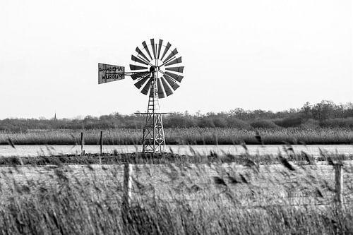 """Amerikaanse windmolen in de  """"Lytse Saiterpolder"""", in Friesland, Nederland / 2014"""