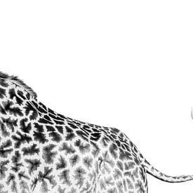 Giraffe staart van Marijn Heuts
