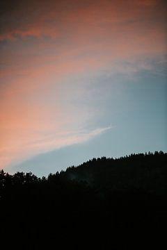 Silhouet van de boomtoppen op de berg tijdens zonsondergang   Spielberg, Oostenrijk van Trix Leeflang