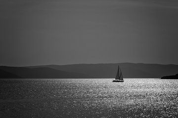 Sailing sur Martin Winterman
