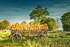 Fröhlicher Herbst von Karl-Heinz Lüpke