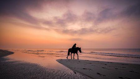 ein Pferd reiten am strand