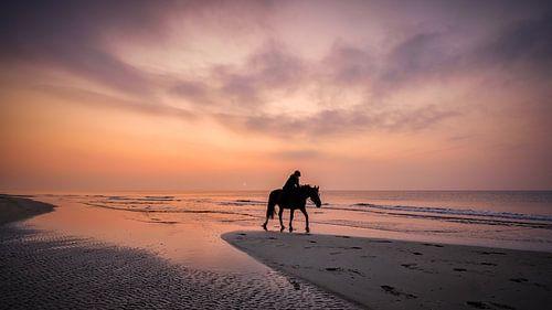 ein Pferd reiten am strand von eric van der eijk