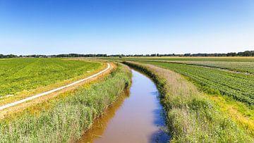 Landschap omgeving Pieterburen in Groningen sur Evert Jan Luchies