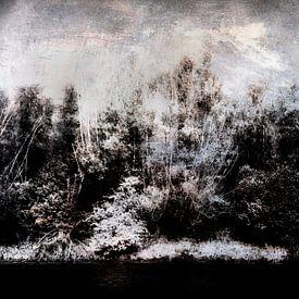 Die Ufer des Biesbosch von Peter Baak