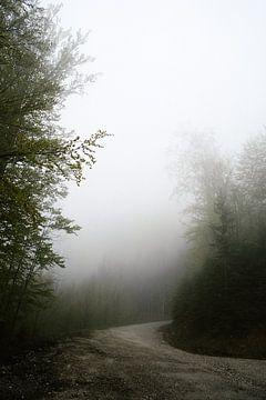 Marcher dans les nuages sur Wianda Bongen