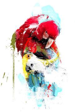 vliegende kleuren van Dray van Beeck