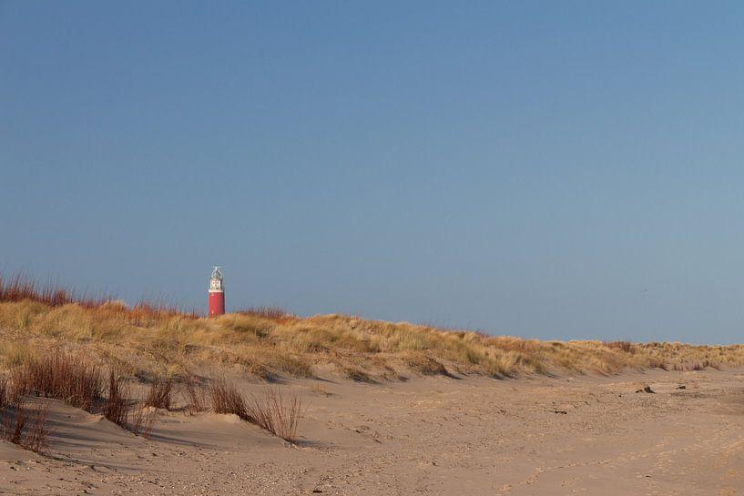 Lighthouse Texel. von Nicole van As
