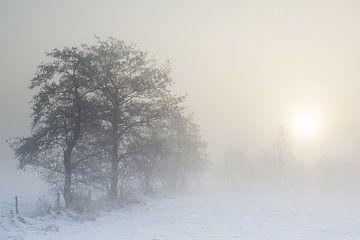 Zonsopkomst door de mist von