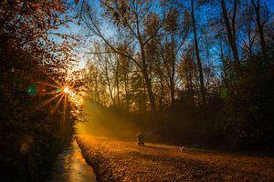 Ritje in de herfst kleuren van Peter Heins