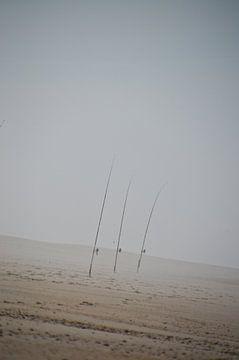Vishengels in zee mist van Marieke van der Hoek-Vijfvinkel