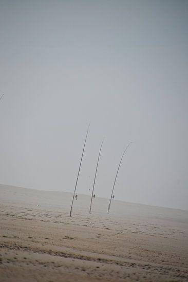Vishengels in zee mist