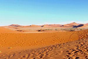 Verstild landschap woestijn panorama, Namibië