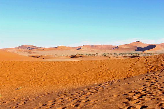 Verstild landschap woestijn panorama, Namibië  van Inge Hogenbijl