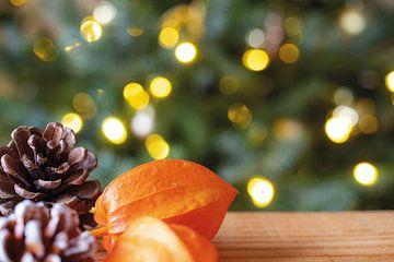 Weihnachtsstimmung, mit Tannenzapfen und Laternenpflanze