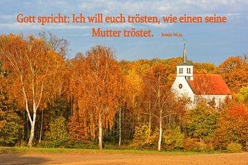 Tröstend van Gisela Scheffbuch
