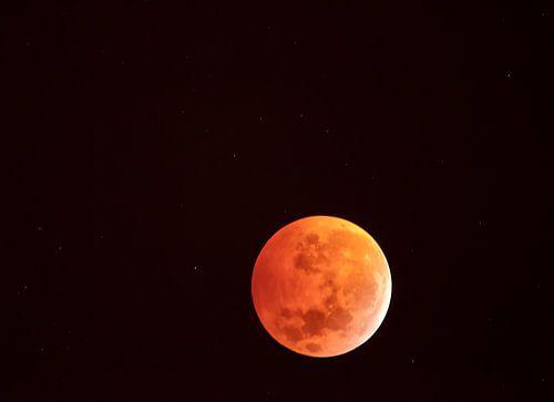 Rode bloedwolf maan in het heelal