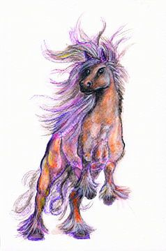 Fantasy horse van Sasha Butter-van Grootveld