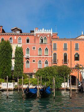 Blick auf den Canal Grande in Venedig, Italien von Rico Ködder