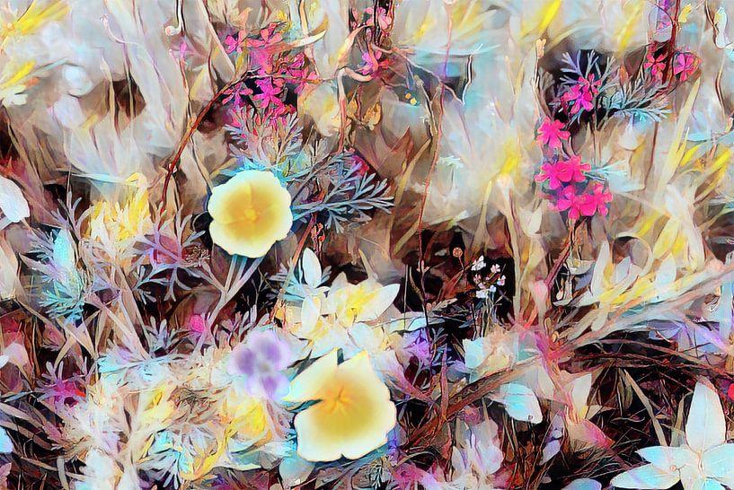 Blumenfeld Ölmalerei von Patricia Piotrak