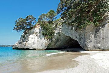 Nieuw Zeeland van Yvonne Balvers