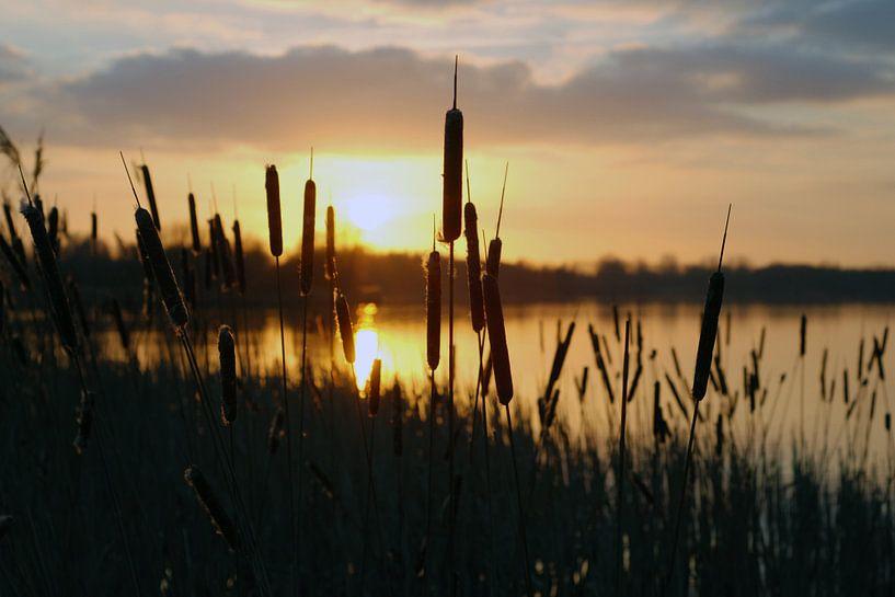 Zonsondergang aan de Gaasperplas van Anne Hana