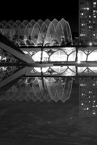 Ciutat de les Arts i les Ciències, Valencia. von Amy Verhoeven