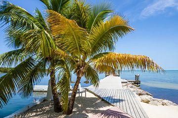 FLORIDA KEYS Heavenly View van