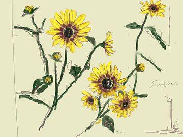 Sonnenblumen-Wahnsinn von Go van Kampen