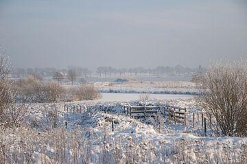 Landschap van Elise Daanen