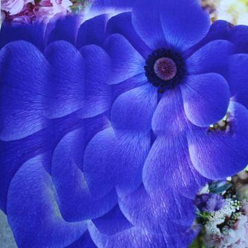 Blaue Blume von Margit Färber
