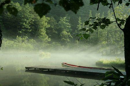 early morning mist Japan 1