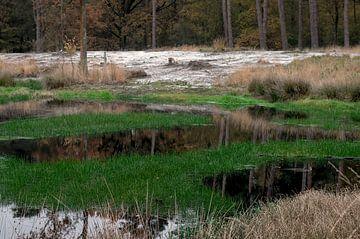 Landschap 24 van Miriam Duda