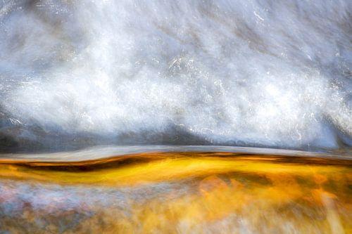 Abstract goud en zilver Leuvenumse bossen van Sander Grefte