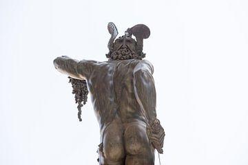 Perseus with the Head of Medusa von Pieter van der Zweep