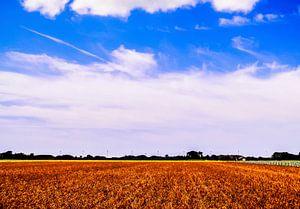 Blue Dutch Sky