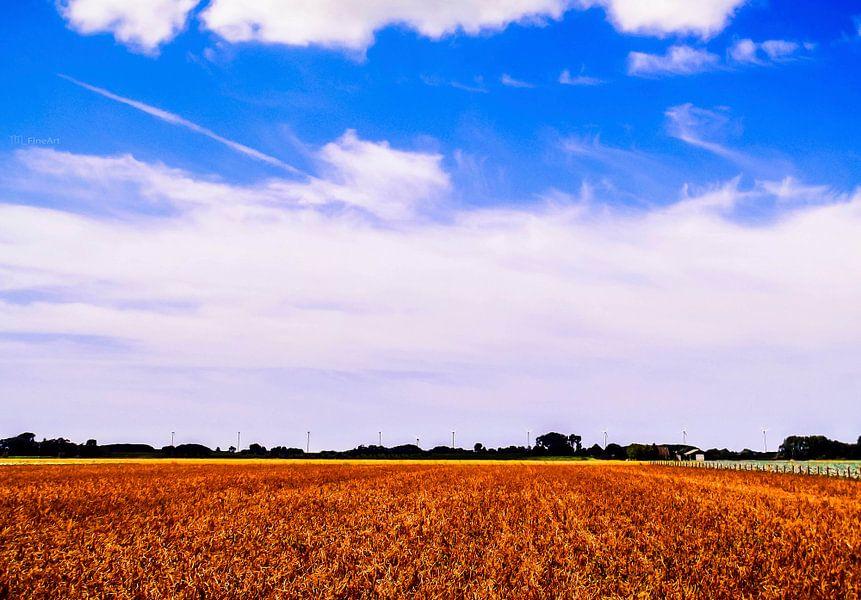 Blue Dutch Sky van Yvon van der Wijk